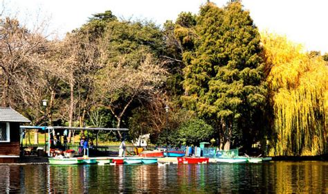boat ride zoo lake picnic spots zoo lake gauteng daily snapshot gauteng