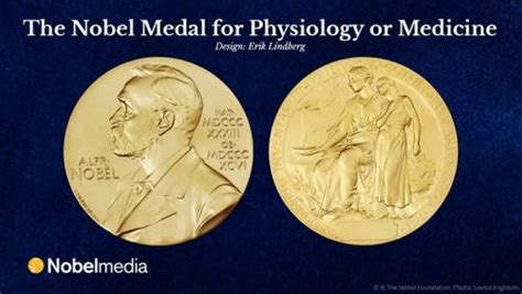 Nobel Prize In Physiology Or Medicine Also Search For Infectious Diseases Dominate Nobel Prize Awards For Medicine Pharmafile