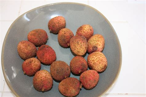 All About Lychees by Newbie Gardener Lychee