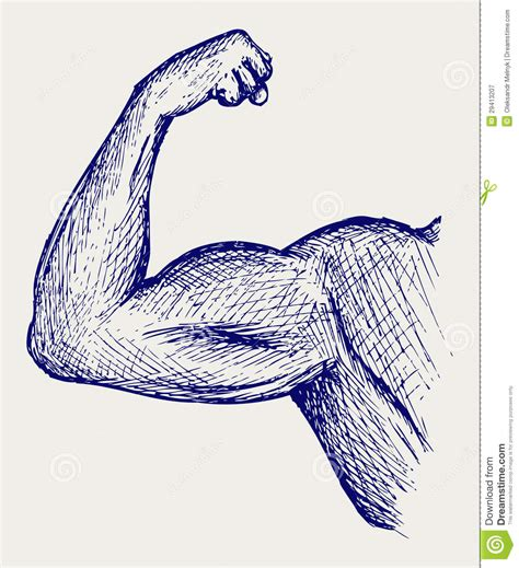 doodle strong strong biceps doodle style royalty free stock photography
