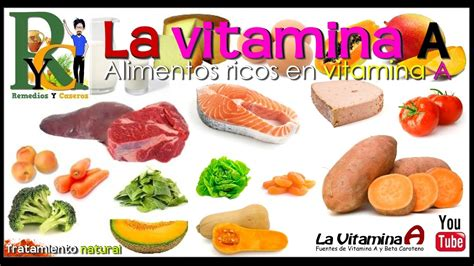 alimentos que contengan vitamina b6 alimentos q contengan vitamina b hogar y ideas de dise 241 o