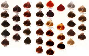 wella color touch wella color touch chart newhairstylesformen2014