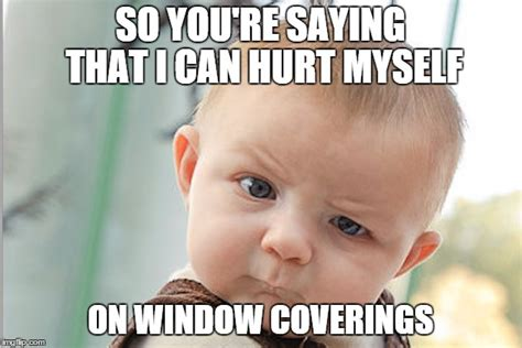 Children Meme - 10 window covering safety memes for pet and child protection