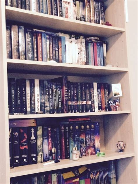 pretty bookshelves pretty bookshelves home design