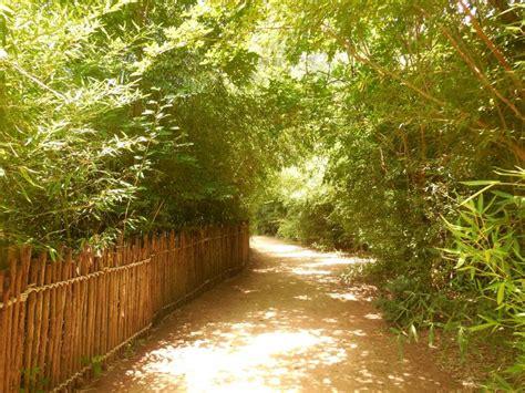 Louisiana Purchase Gardens And Zoo by Garden Club Inc Louisiana Purchase Gardens And Zoo Projects