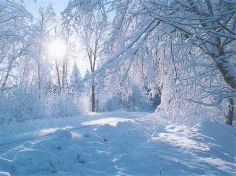 beautiful winter beautiful nature winter wallpaper wallpaper express is