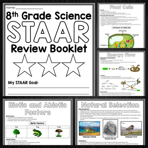 theme quiz 8th grade staar test math chart 8th grade staar mathematics