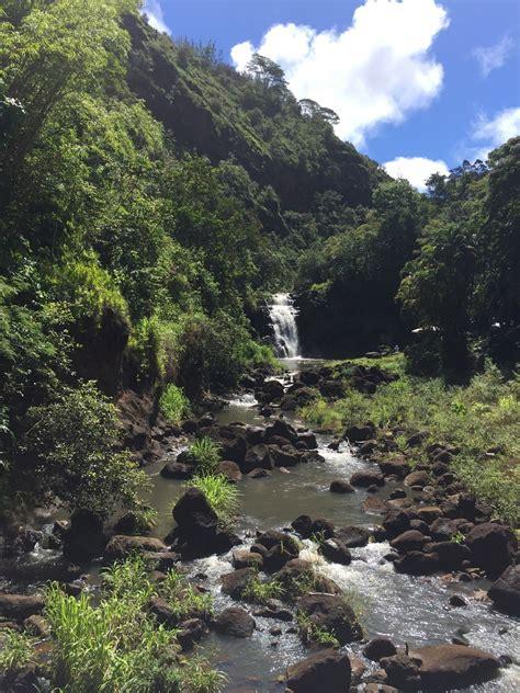 botanical gardens oahu hawaii waimea botanical garden pupukea oahu hawaii it is
