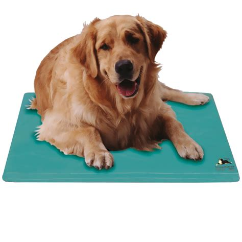 cooling beds for dogs canine cooler bed