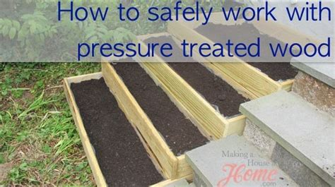 pressure treated wood for raised beds pinterest the world s catalog of ideas