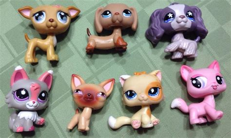 ebay lps cats and dogs littlest pet shop lps lot of dogs and cats dachshund cocker spaniel ebay