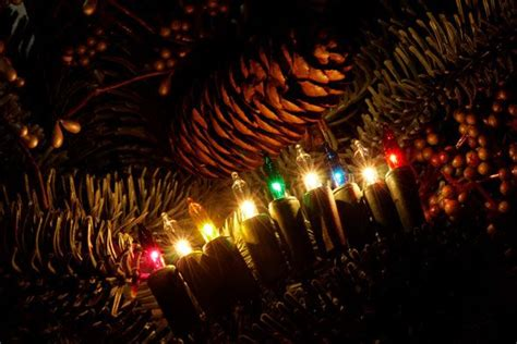 lights on tree how to hang how to hang lights on tree balsam hill