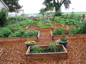 using cedar mulch in vegetable garden opinion gravel or wood chips looks like wood chips win