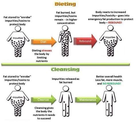 Does You Sking Get When You Are Detoxing by How A Nutritional Detox Helps Promote Healthy Weight