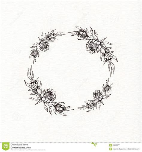 guirnalda de la flor del protea stock de ilustraci 243 n