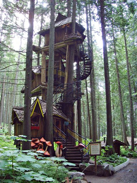 tree house designs to live in tree houses to live in best design overview home design and home treehouses