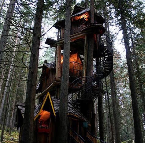 Tree Houses For by Enchanted Forest Treehouse Would You Live Here
