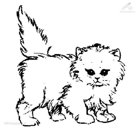 coloring pages of baby cats cute cat coloring pages bestofcoloring com