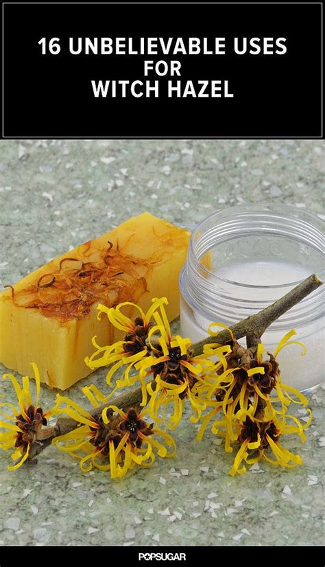 witch hazel hair growing 113 best images about natural diy essential oils on