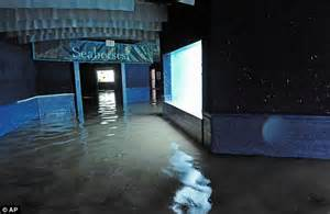 Superstorm Sandy 2012: Staff at flooded New York Aquarium may have to