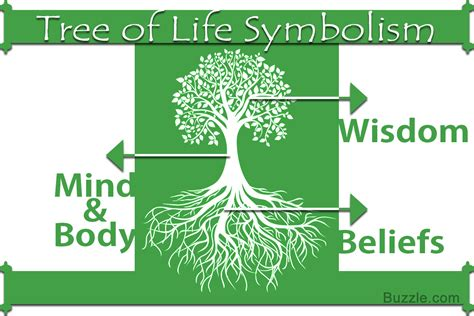 symbolism of a tree a lucid explanation about the meaning of tree of life