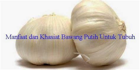 Obat Mata Bintitan Untuk Ibu manfaat dan khasiat bawang putih untuk tubuh info tentang