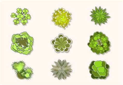 best free vector flat top view of tree vectors free vector