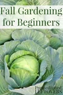 fall vegetable gardening tips fall vegetable gardening for beginners gardens