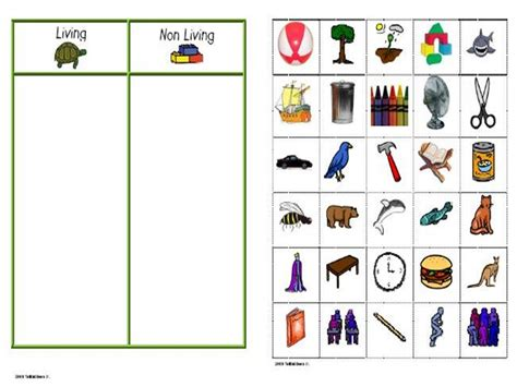 living and nonliving things worksheet photos getadating
