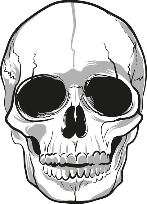 Skulls PNG Image - PurePNG | Free transparent CC0 PNG