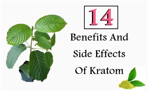 Hair Dryer Benefits And Side Effects 14 benefits and side effects of kratom style presso