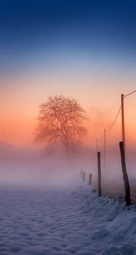 wallpaper iphone 6 winter winter scene fog glow iphone 6 plus hd wallpaper ipod