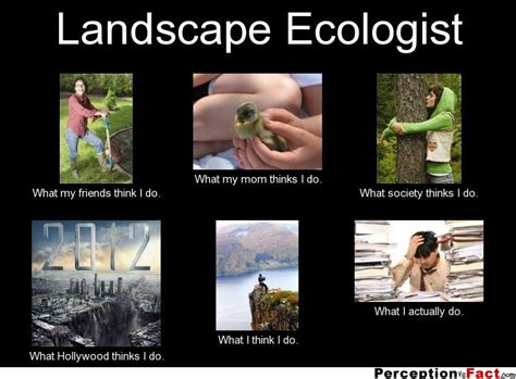 what do landscapers do landscape ecologist what people think i do what i