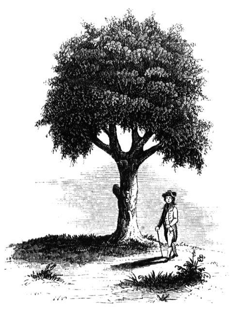 Liberty Tree | ClipArt ETC