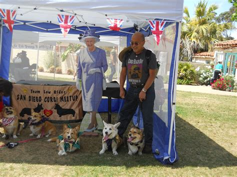 corgi puppies for sale san diego are corgis suited for in san diego mccnsulting web fc2