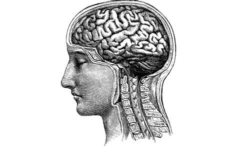 test cognitivi test cognitivi analisi neuropsicologica a domicilio