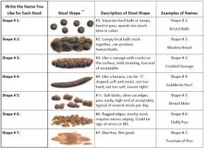 Stool composition using the bristol stool chart below anything