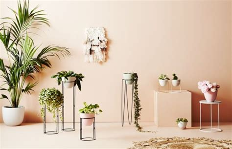 stylist alana langan launches online homewares store hunt bow the interiors addict ivy muse launches botanical concept store in melbourne