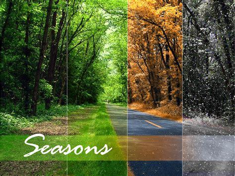 seasons by yucki on deviantart