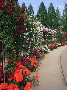 Garden Wiki Garden