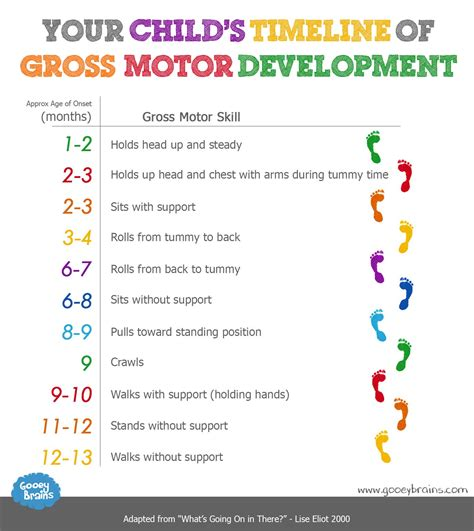 motor development activities child development motor skills 101 what to expect and