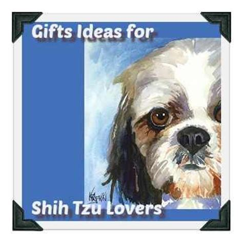 shih tzu food chart shih tzu puppy weight chart calculate the size of a tzu