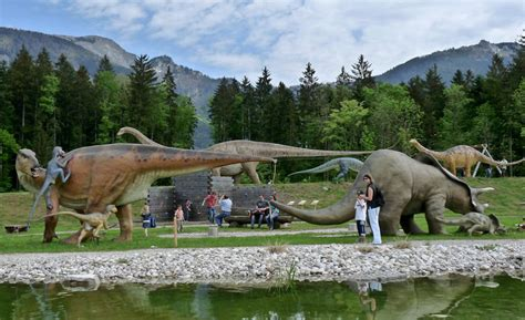 poste pavia orari piovera la grande mostra sui dinosauri a pavia