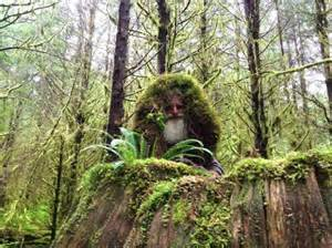 all new series the legend of mick dodge premieres