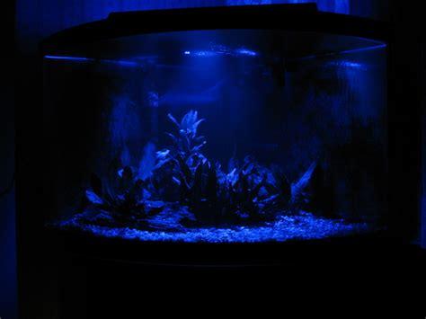 aquarium lunar led lights lunar light aquarium light the river city
