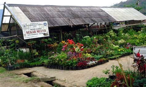 Jual Polybag Murah Di Malang desa bunga sidomulyo batu villa 9 detik melangkah