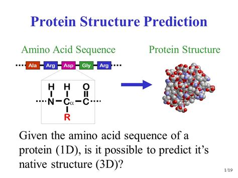 protein 3d structure prediction protein structure prediction ppt