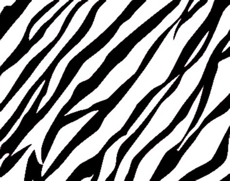 zebra print background free images at clker com vector