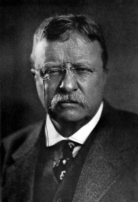 presidency of theodore roosevelt wikipedia the free the encyclopedia americana 1920 roosevelt theodore