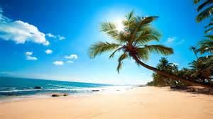 schwimmbad mit sand und palmen hd hintergrundbilder strand palmen meer sand sonne sommer